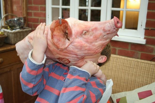 pigs-head
