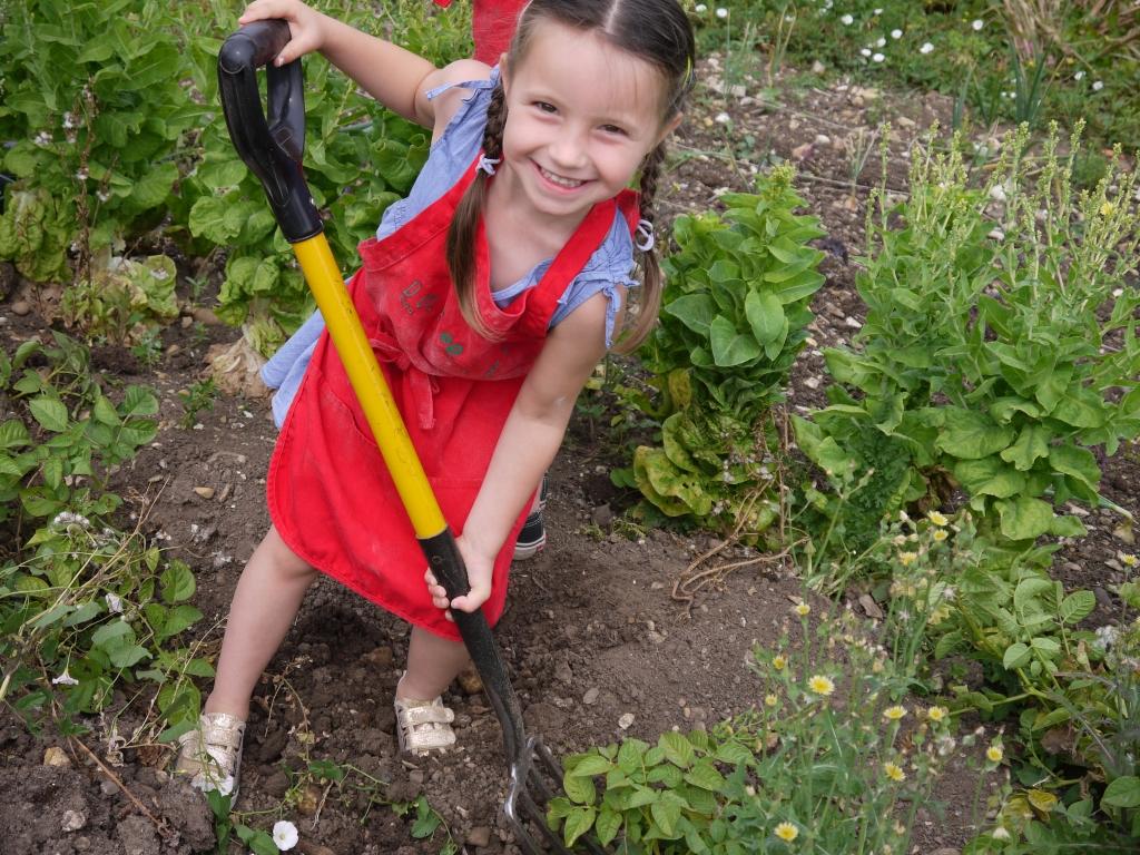 Olivia digging potatoes