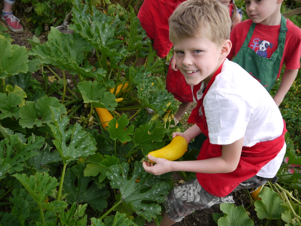 Zac finding a courgette