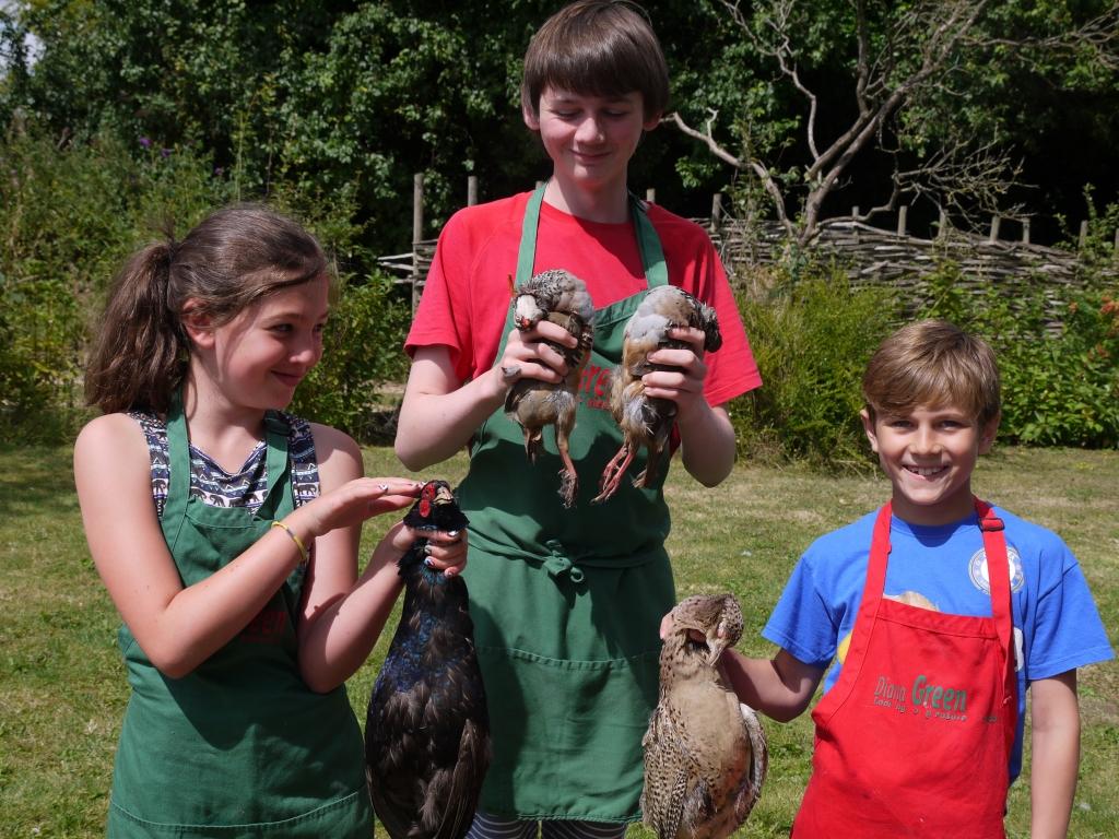 Pheasant & Partridge