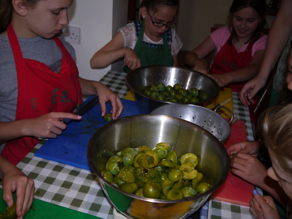 Removing stones from greengages