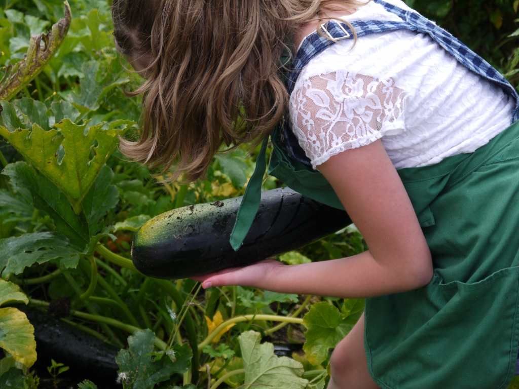 Picking marrow